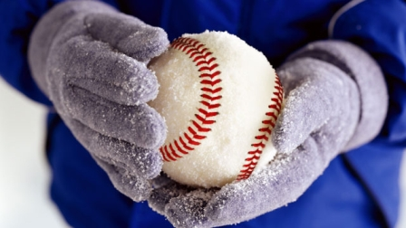 Winter Baseball